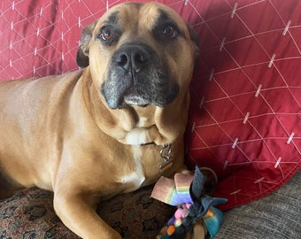 Fleece dog toy, Lanyard fleece dog toy, Pit Bull tested n approved, made from my fleece scraps, machine washable, lasts long for tough dogs
