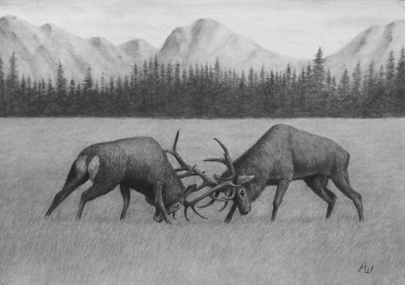17+ Best Charcoal Pencil Drawing Nature - Art Drawing ...