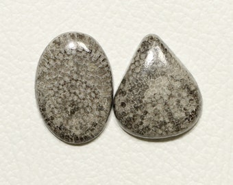 Natural Fossil Coral,Fossil Coral Cabochon,Fossil Coral Loose Gemstone,Top Quality Fossil Coral Matching Earrings Pair,29x22x4 mm,42.10 Cts