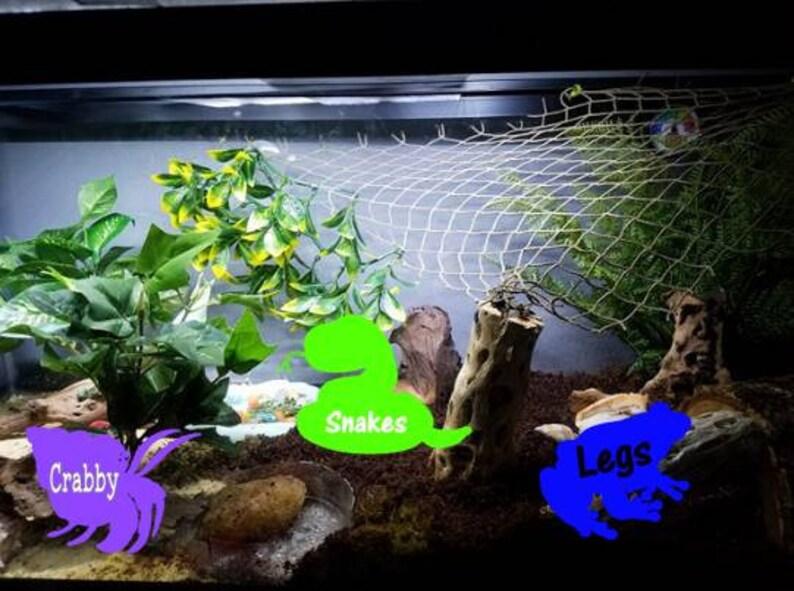 Fish Tank Pet Labels Pet Name Label Reptile Tank Etsy