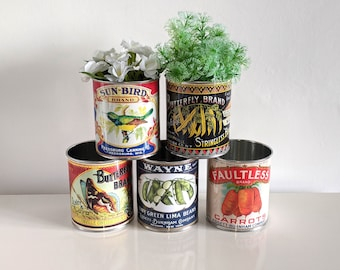 Vintage retro food tin cans large size. Storage for home, cutlery holder cafes shop, restaurant display. Props replica labels recycled green