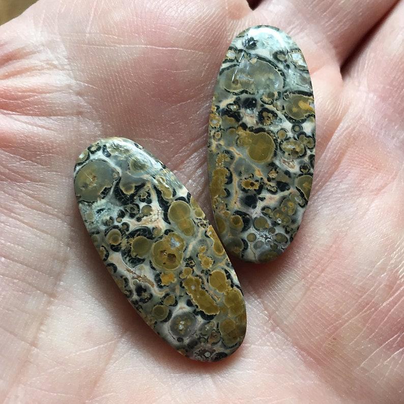 natural jasper AAA cabochons pair 15X34mm Leopard skin jasper long oval cabochons matching pair