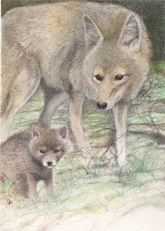 cheerful art for your home gift idea for animal lovers Mama Coyote and pup ATC animal art ACEO Wild Families