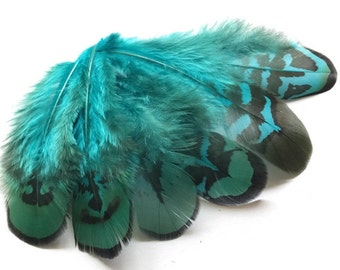 Feathers | Natural Feathers | Earrings feathers | Millinery Jewelry Crafts supplies| Hair accessories Reeves Pheasant FA08