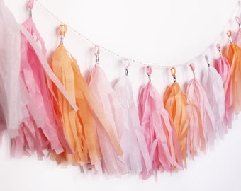 Tassel Garland | Tassel Banner | Tassels | Coral Tassel Garland | Peach Tassel Garland | Peach and Pink | Party Decor | Sherbert Garland |