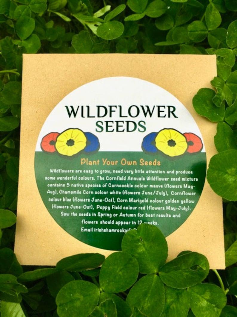 Irish Wildflower Seed Packet Mix image 0