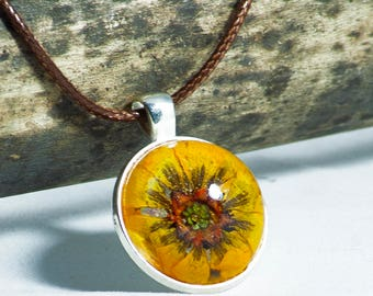 Yellow Real Field flower in Resin