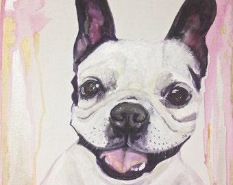 12x12 Pet Portrait