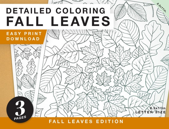 Printable Coloring Book Page  Fall Leaves Edition