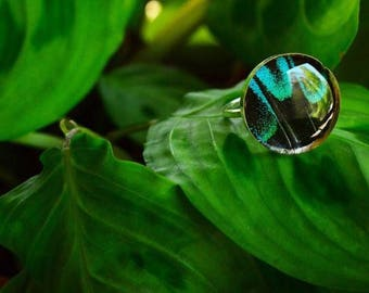 Real butterfly wing ring size 8, in sterling silver and resin
