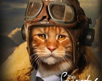 Cat Portrait, Pilot Cat portrait, Cat Portrait Custom, Cat Portrait Custom, Pet Portrait, Custom Pet Portrait, Pet Portrait From Photo