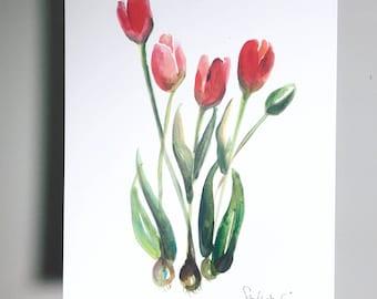 Tulips! 11x14 in print