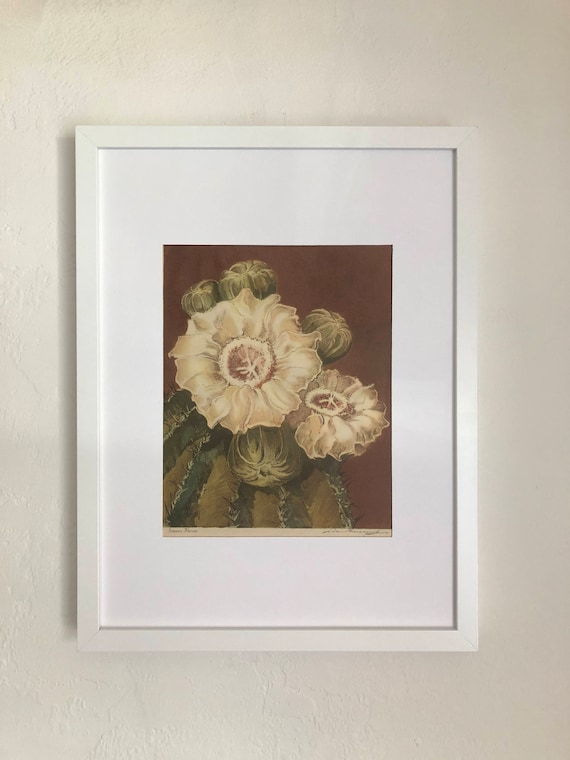 1940s Saguaro Bloom Desert Print ~ Arizona Highways