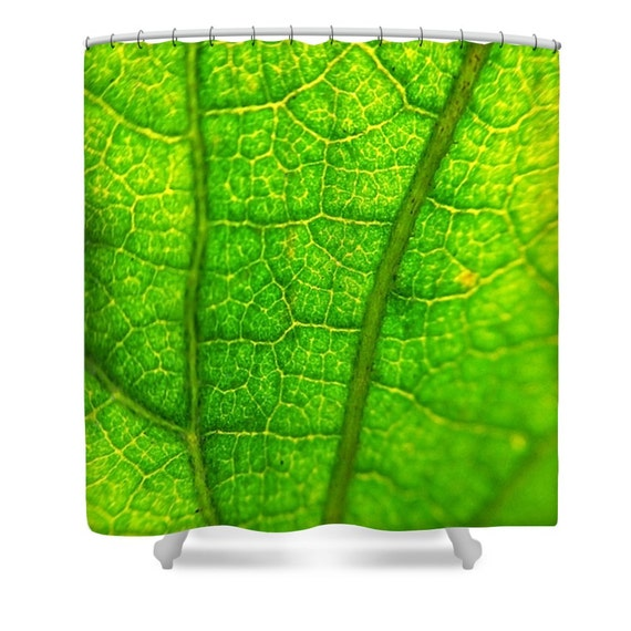 Green shower curtain green bathroom decor nature shower | Etsy