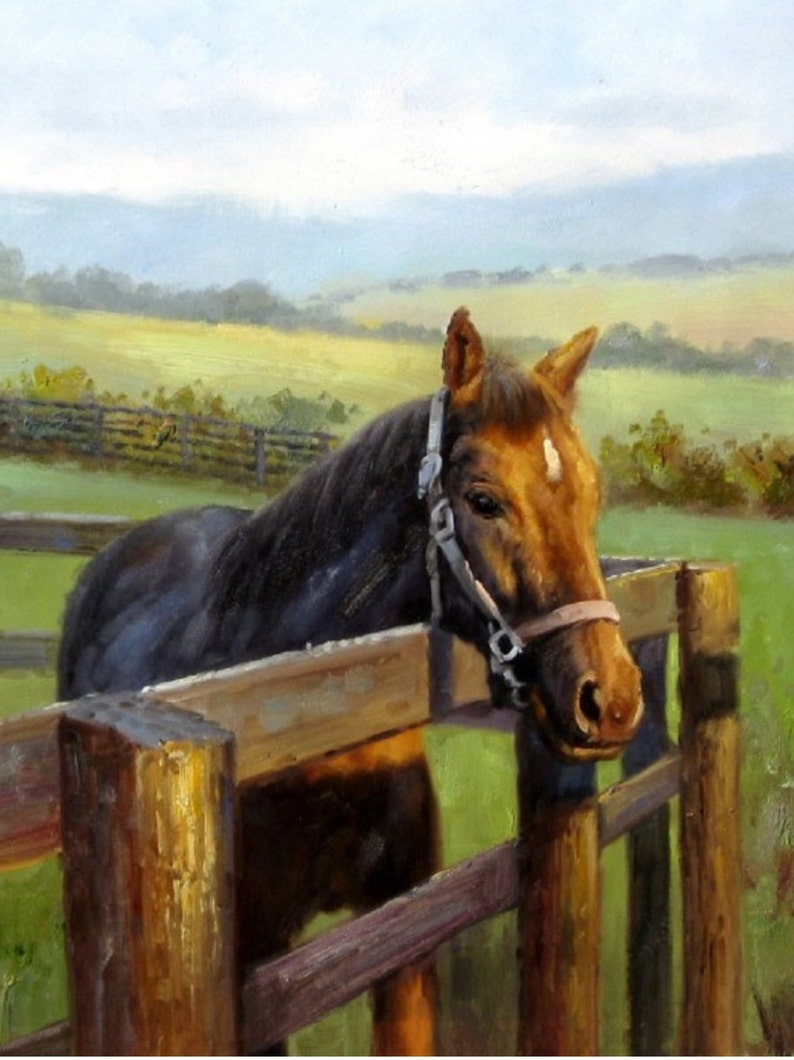 Custom Horse Portrait. Custom Portrait. Commission Horse image 0