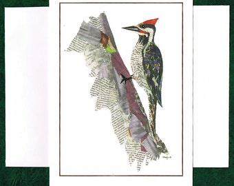 Woodpecker - Greeting Card