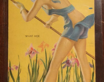 Original 1940's Mutoscope Pinup Vending Card Lithograph - All American Girls - What Hoe! (AAG2)