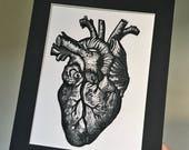 Heart print, anatomical heart, anatomical print, love print.