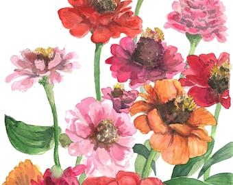 Watercolor zinnias floralPrint, Floral Art, Nature Art, Wall Art, eclectic home decor, Botanical Art