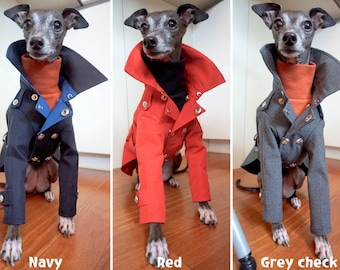 Italian Greyhound apparel;trench coat