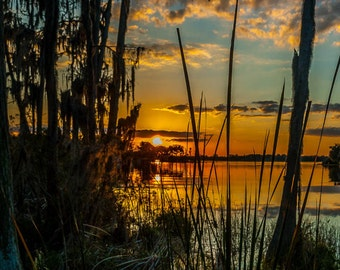 """Old Florida-  """"Florida Lake Sunset"""" Fine Art Color Photograph  (16"""" x 27"""" Print on 24"""" x 36"""" Archival Board and Mat)(No Frame)"""