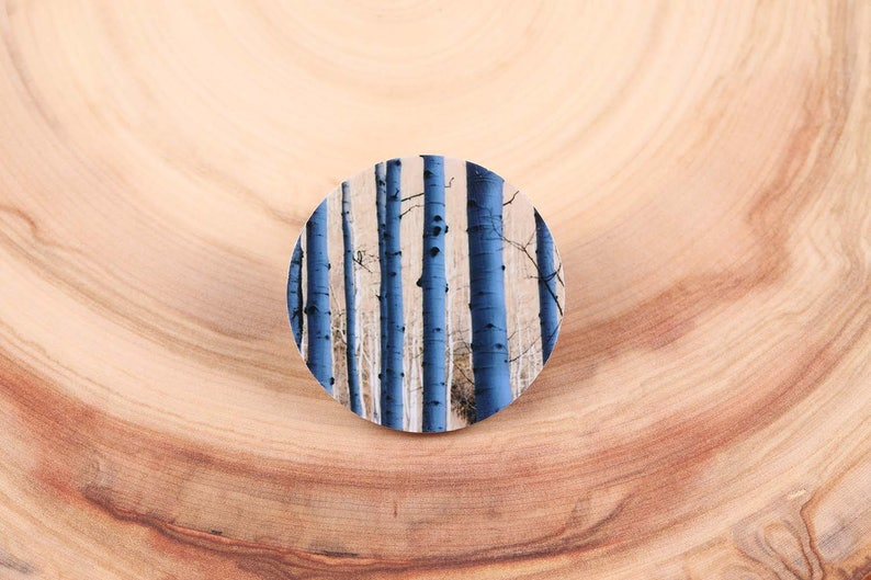 Aspen Blue Trees in the Shadows Photo Magnet Pin  Brooch image 0