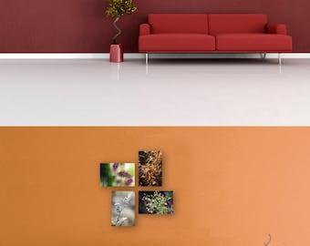 "Nature Photography - Set of 4 - Fine Art Print - Mounted Wall Art - ""Seasons Collection"""
