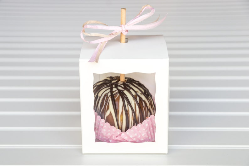 25 White Caramel Apple Boxes With 25 Wooden Sticks  Candy Apple Boxes