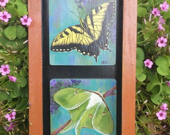 Wings of Flutter painting packet