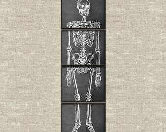 Chalkboard skeleton vintage printable wall art décor Halloween set of 4