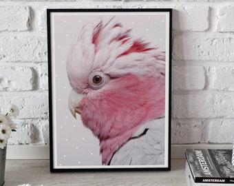 Parrot Print, Pink Parrot Poster, Parrot Illustration, Bird Print, Modern Home Decor, Bird Wall Art, Nursery Decor, Animal Art, 11x17 print