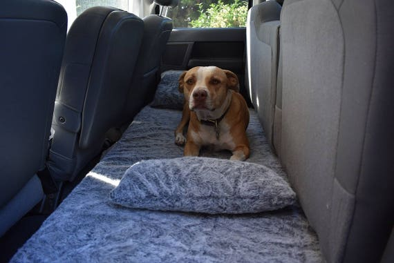 dog bed truck