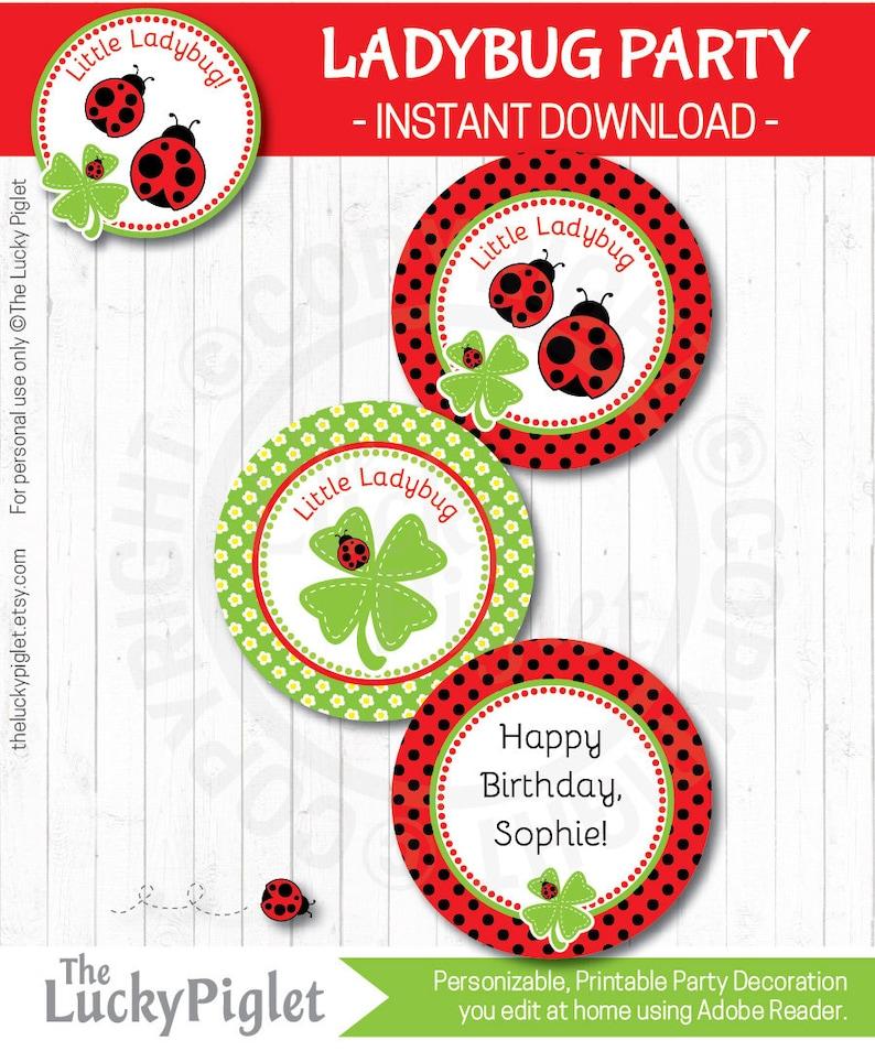 LADYBUG DECORATIONS Ladybug Birthday Party Prints Instant Download Ladybug Favor tag 3 Ladybug Centerpieces Edit Text in Adobe Reader
