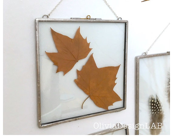 6 x 6 Glass floating frames, wall art, dried flowers frame, square picture frames, copper frame, handmade frame.