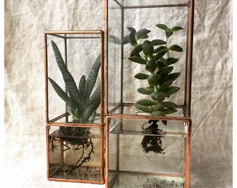 Hydroponic terrarium, LARGE SIZE hydroponic glass box for succulents, easy roots system, hydroponic garden hydroponic planter indoor graden.