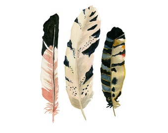 """Feather Watercolor Print-""""The MacGregor"""" 5x7 Giclee print, Feather painting, Three feathers, Wall art, Nursery Decor, Housewarming"""