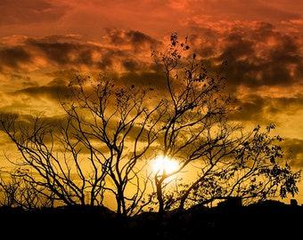 Reddish sunset. Sunset of fire.