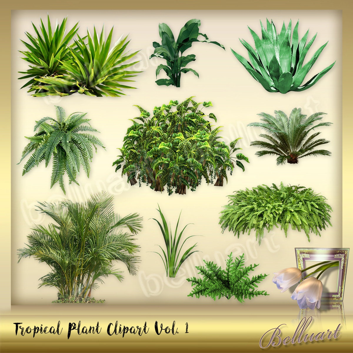 10 Tropical Plant Clipart Vol 1 Palm Leaves Clipart