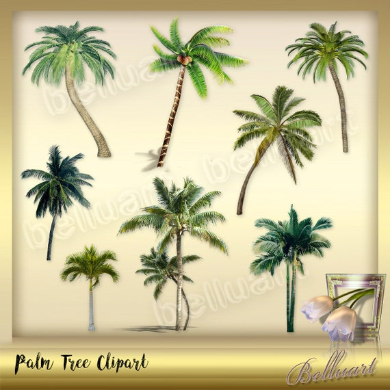 10 Palm Trees Clip Art Palm Leaves Clipart Tropical Clip