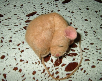 Primitive Sleeping Mouse