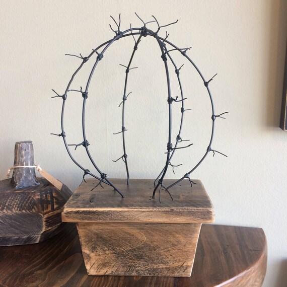 Barb Wire Cactus