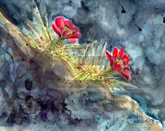 El Malpais Red Blooming Cactus Original Watercolor and Pastels - Matted 14 inch x 11 inch