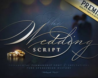Modern fonts betterfly font family with 3 fonts and extras etsy ornamental penmanship font the wedding script publicscrutiny Gallery