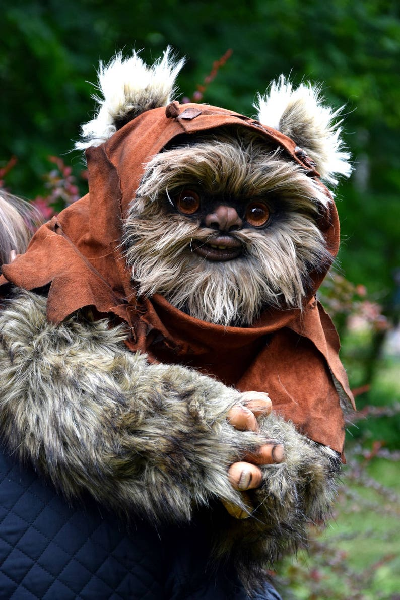 Image result for ewok