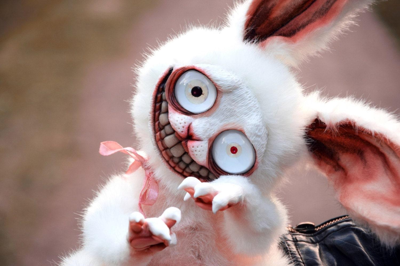 Картинка безумный кролик