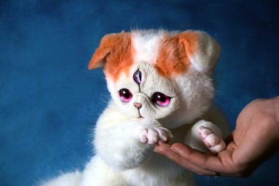 One And A Half Exotic Shorthair Cats Etsy