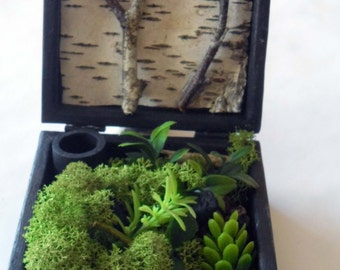 Pocket garden, pocket garden, garden box, garden box, wooden box, wooden box, vegetal design, green