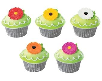 Iridescent Gerbera Daisy Cupcake Picks - 24 Count