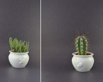 Vintage Planter, Vintage Cactus Planter, Small Plant Holder, Small Cacti Planter, Succulent Holder, White Ceramic Plant Pot, Ginkgo Planter