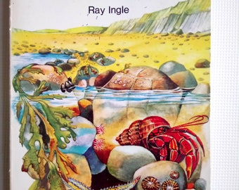 A Guide To The SeaShore by Ray Ingle (Illustrated)